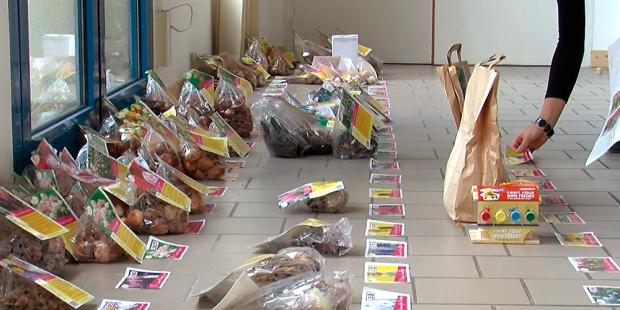 Action Fleurs : Conseils de distribution pour votre vente de bulbes et plants