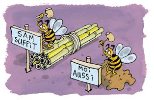 Accueillir les abeilles dans son jardin