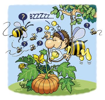Pollinisez vous-même votre jardin