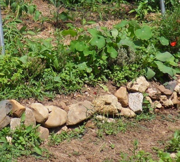 Créer une rocaille