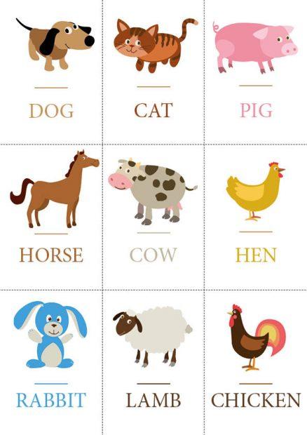 Cartes pédagogiques enfants animaux anglais couleurs