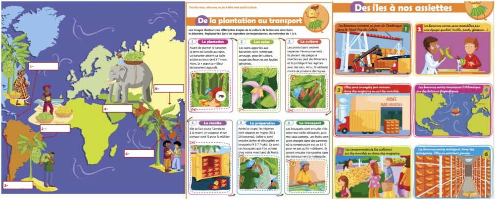 Fiches du Petit quotidien sur la culture de la banane en Guadeloupe Martinique