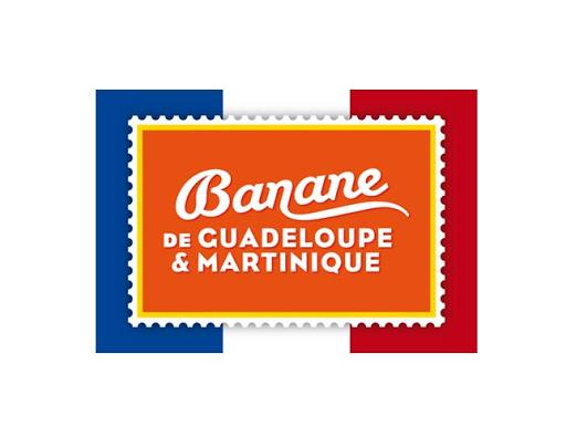 Martinique et Guadeloupe culture de la banane