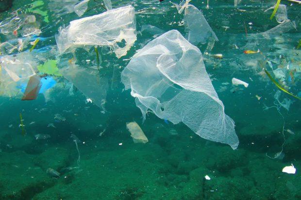 Pollution des fleuves et océans : les microplastiques
